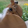 spinning angora yarn