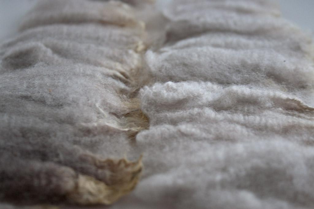 Washing Raw Wool Fleece For Worsted Spinning Nancy