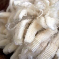 NewZealand Merino Wool (48)